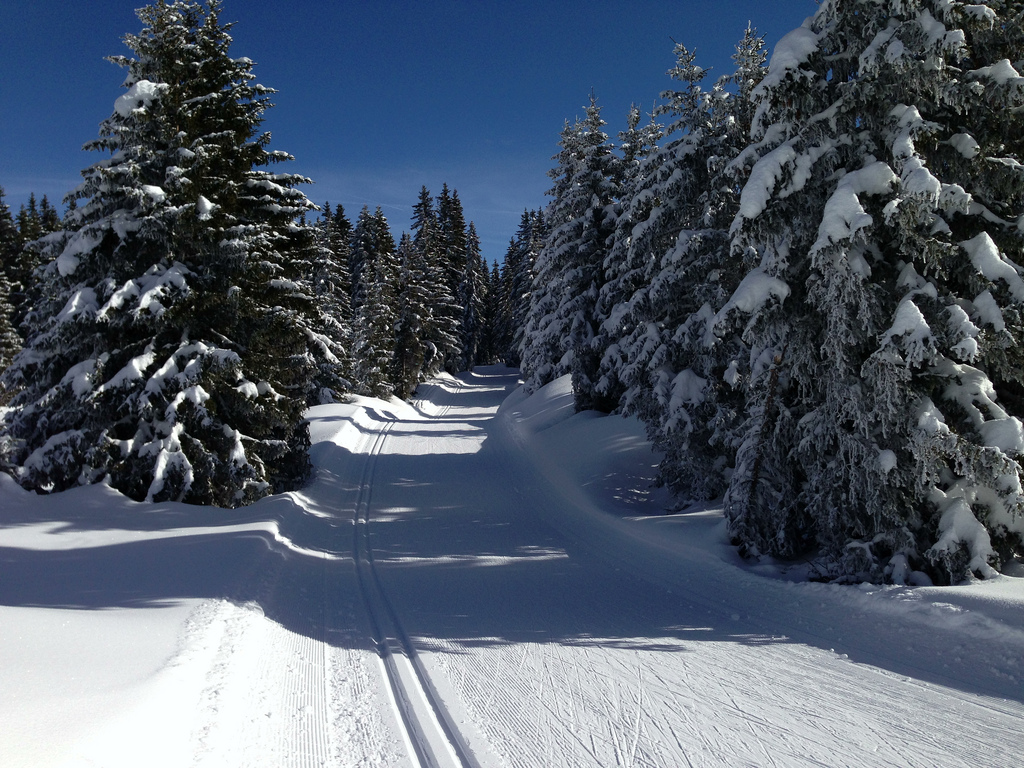 Fourteen cycling climbs with cross country skiing at the for Mont revard