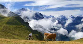 """2015 """"Cycling the Alps"""" Calendars"""
