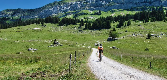 Plateau des Glières and Above